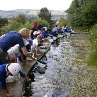Y2 visit to Nell Bank